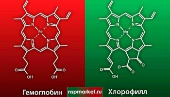 Гемоглобин и хлорофилл